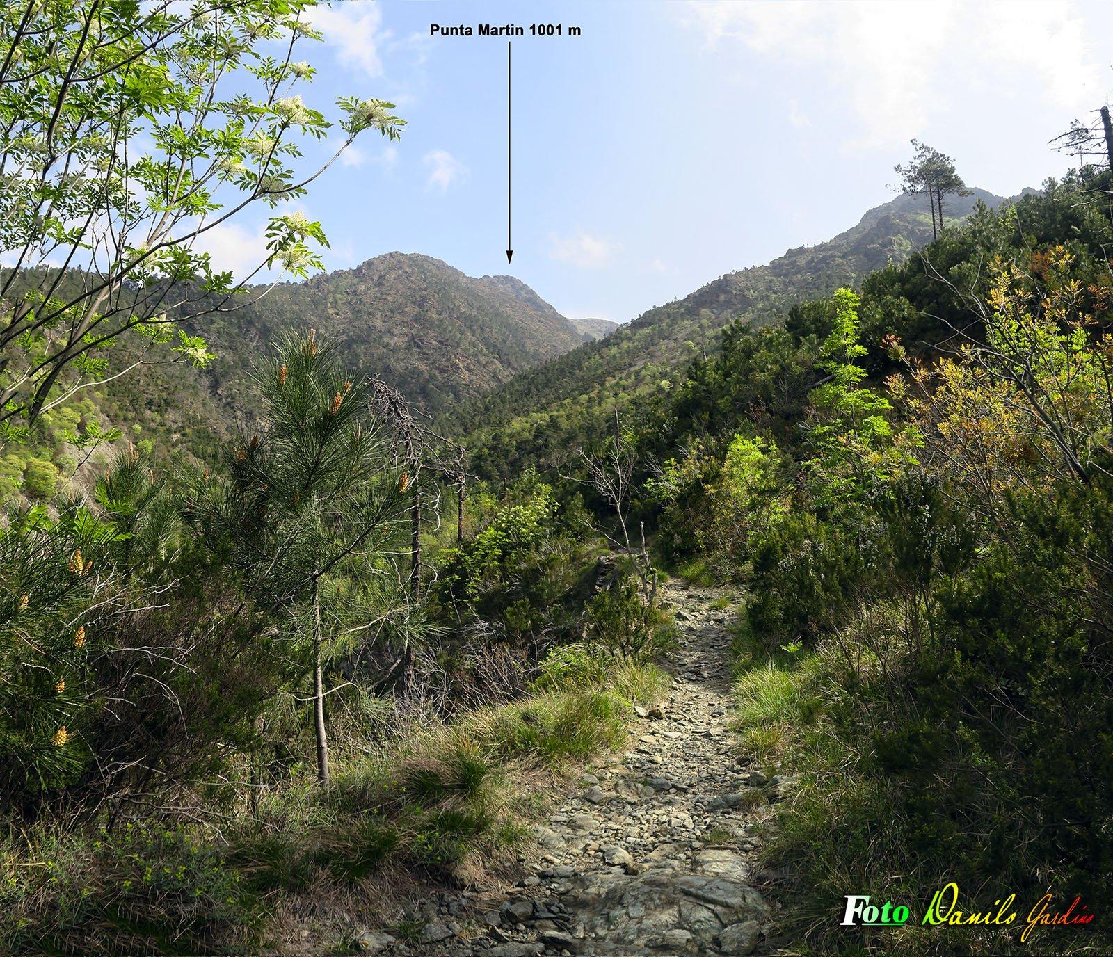 Panoramica de sentiero di risalita dopo Acquasanta