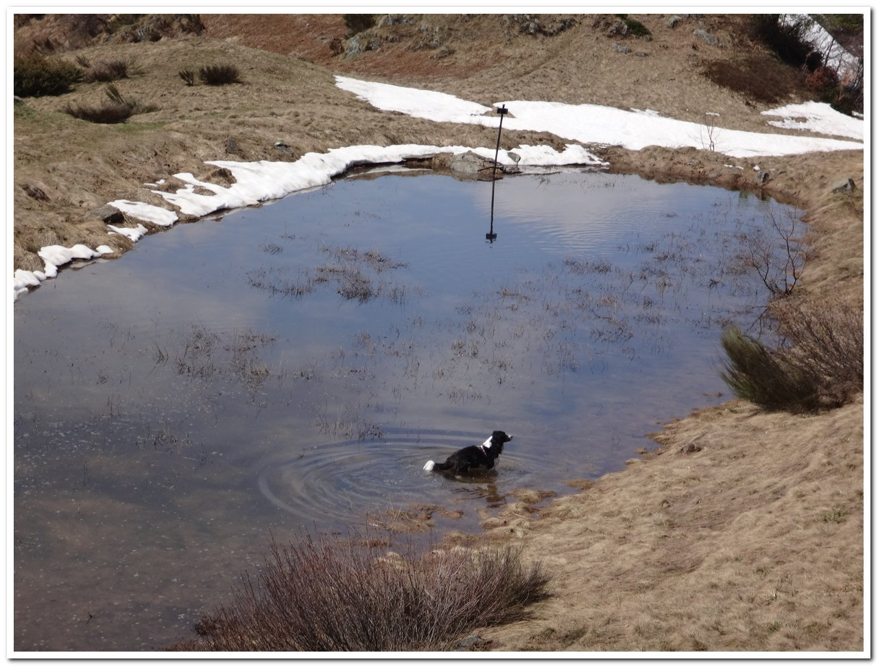 Il laghetto della Colma