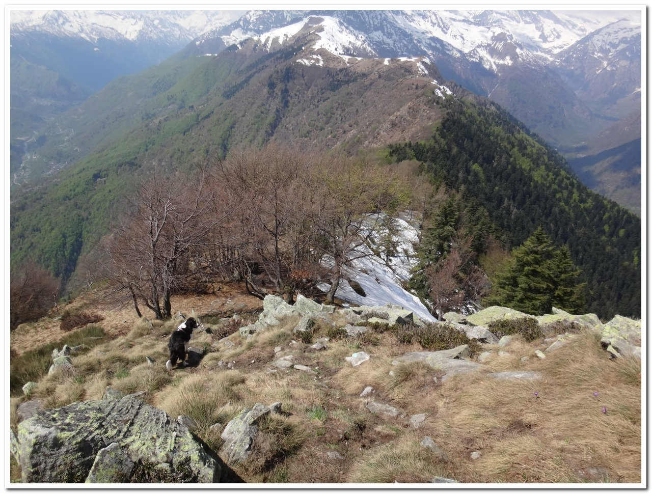 La cresta verso la Colma