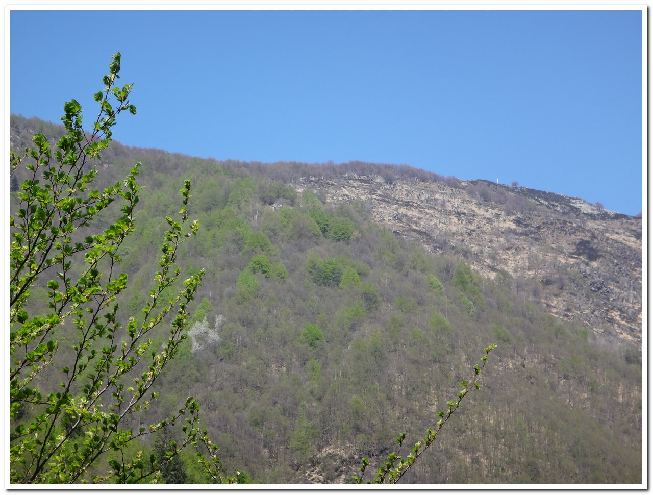 La cima vista poco oltre Drocala