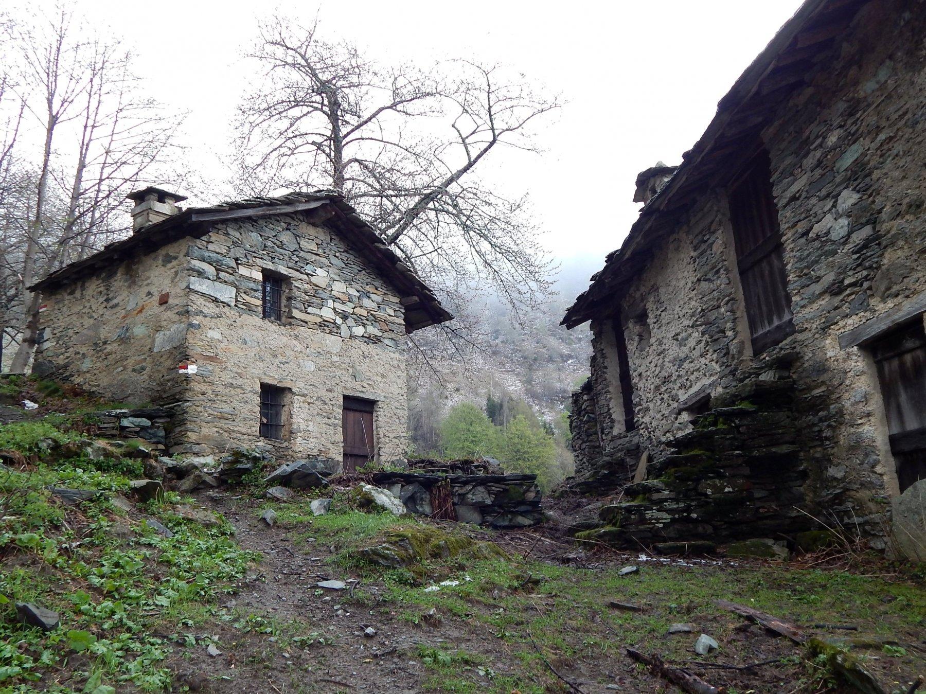 Alpeggi Lavassè