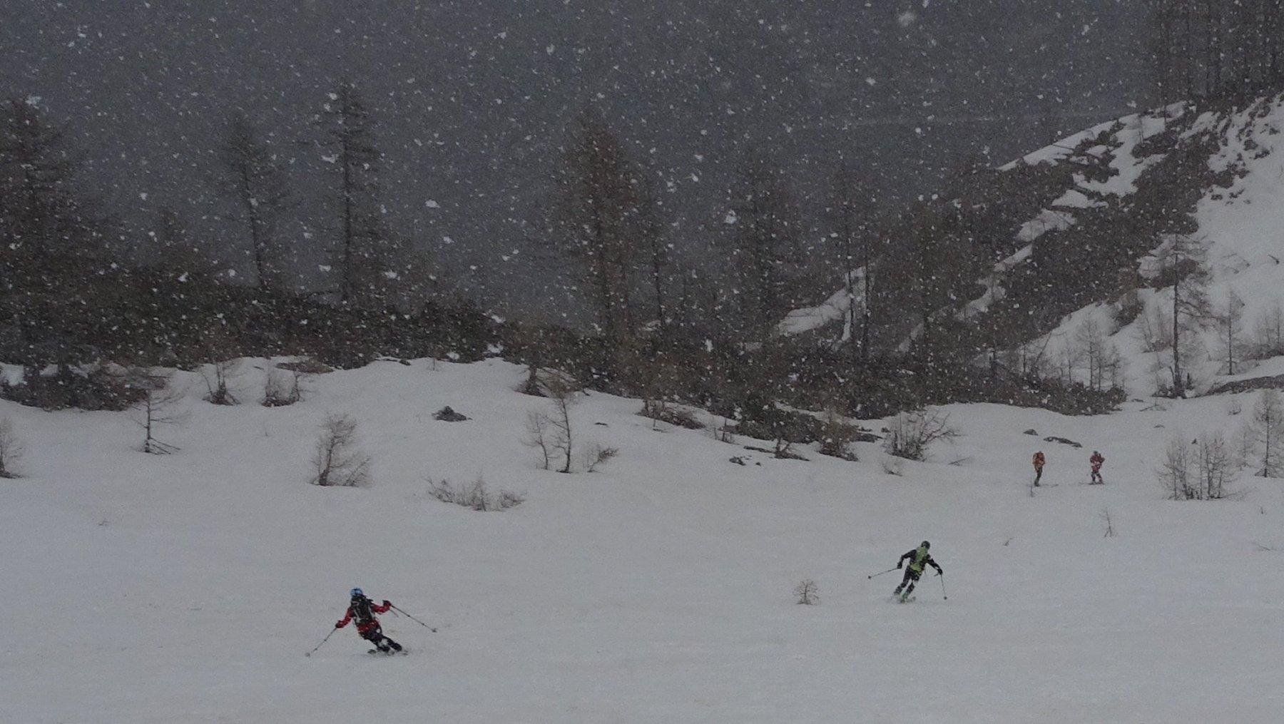 Nevicata sino a 1800 mt