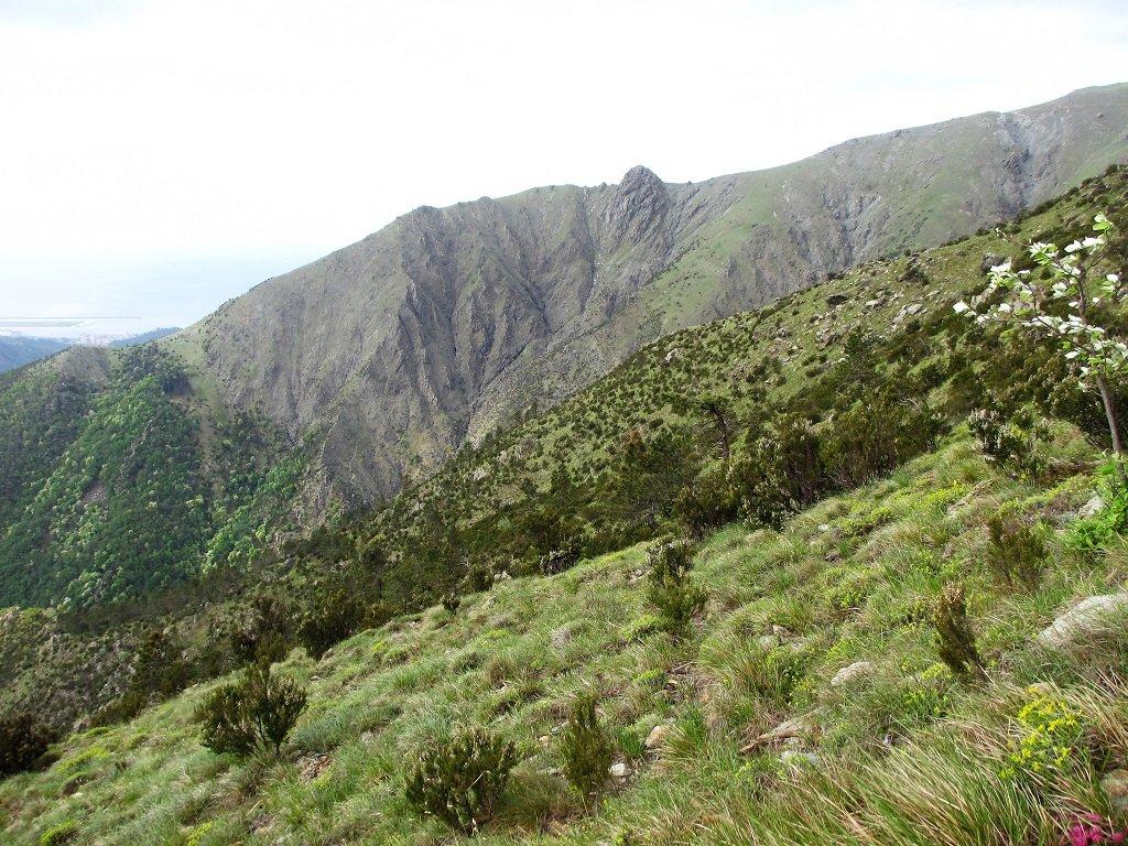 Punta del Corno, il sentiero parte dove il rio Gandolfi si immette nel Torrente Varenna