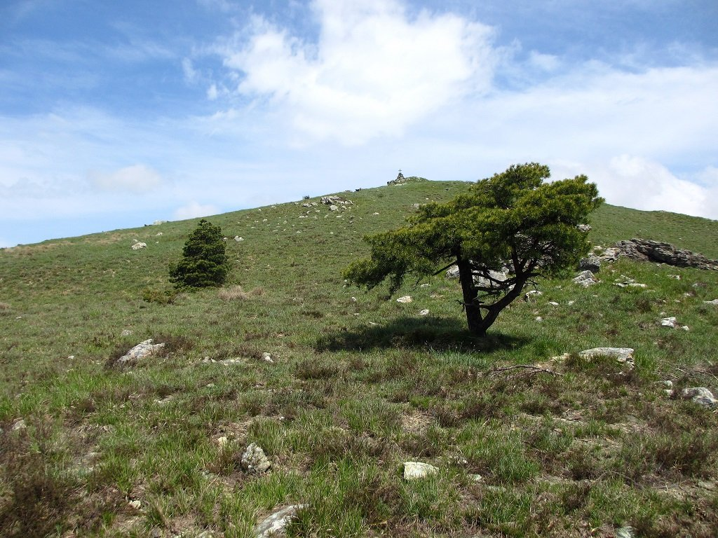 Monte Foscallo