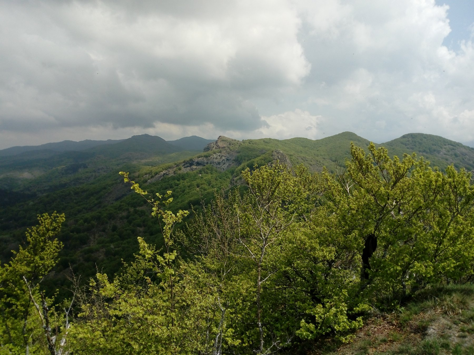 verso il Roccabruna, lontano il Montarlone
