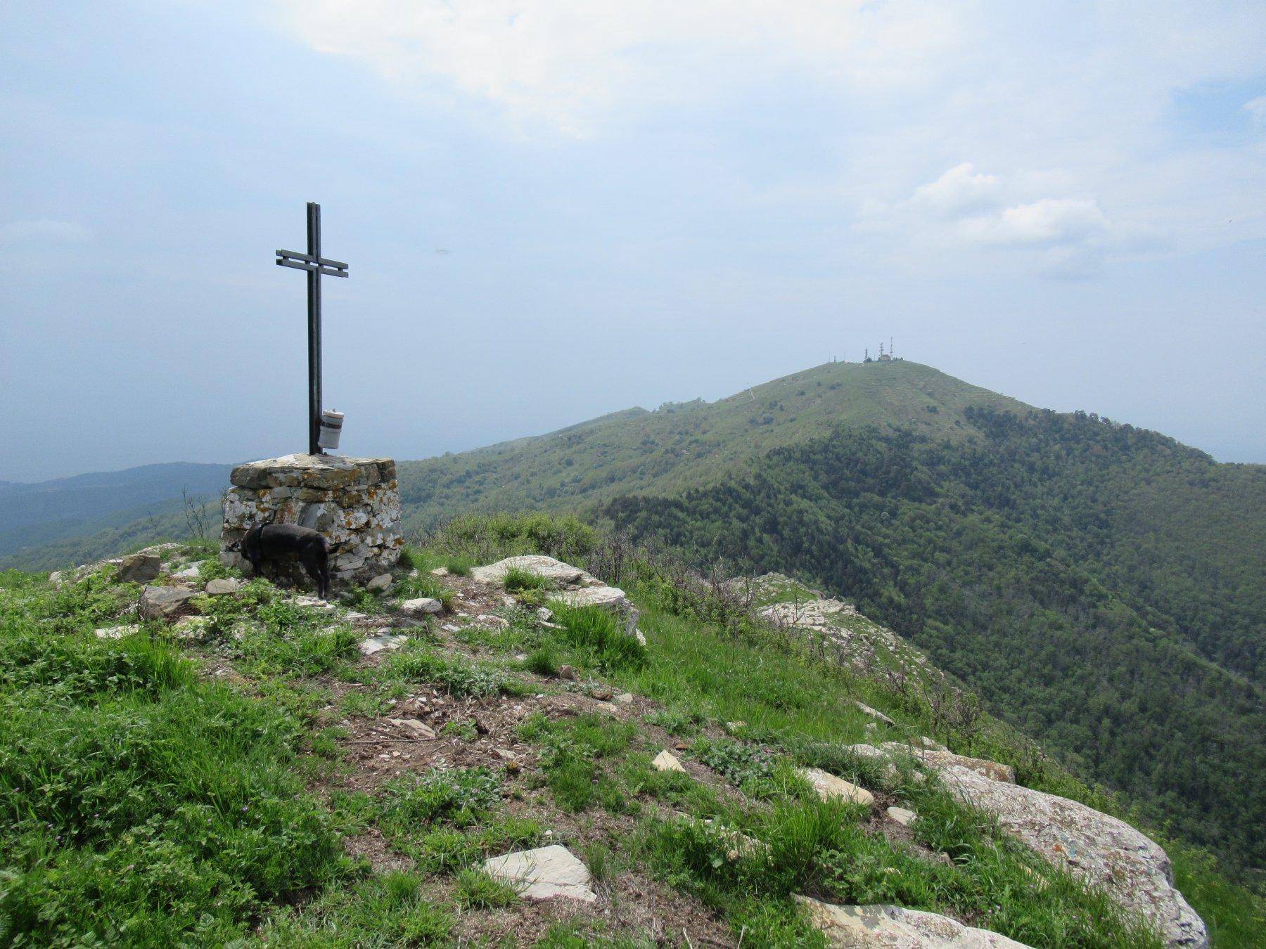 Il Monte Faudo (m.1149) dal Monte Arbozzaro (m.1129).