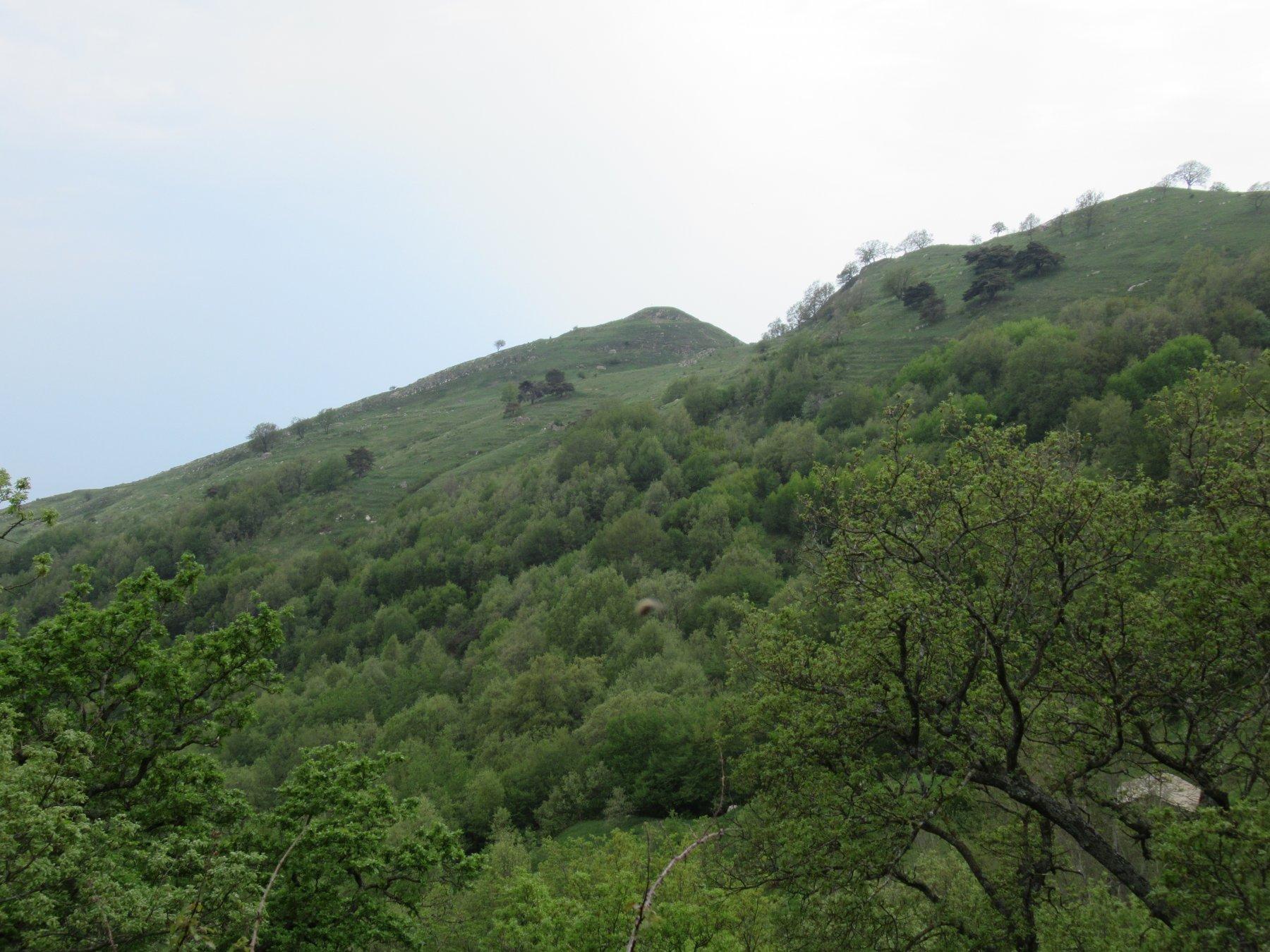 Monte Follia visto nella discesa verso Passo Bastia e Santa Brigida.