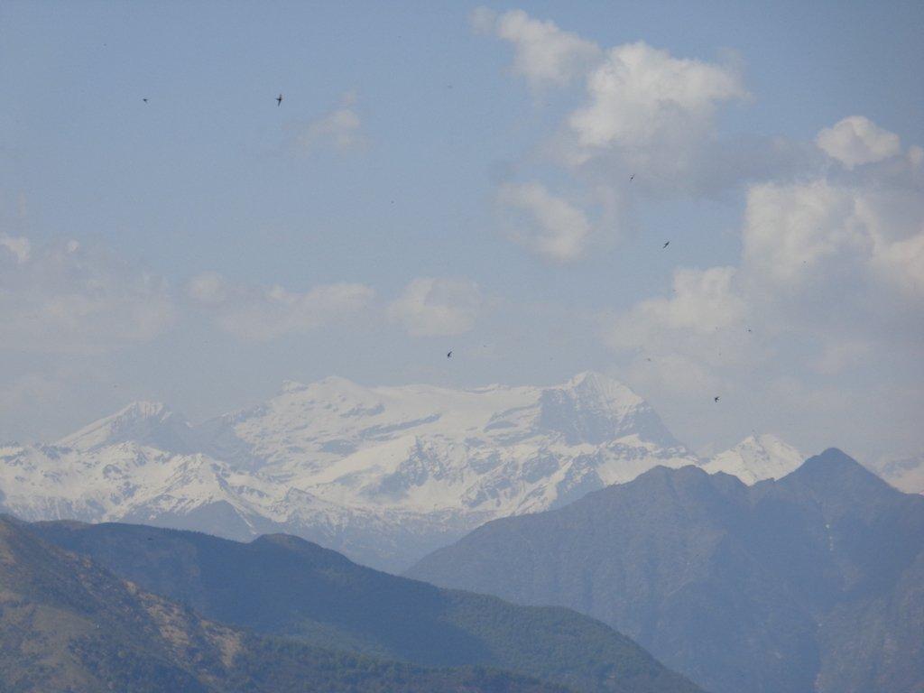 Monte Rosa dalla cima
