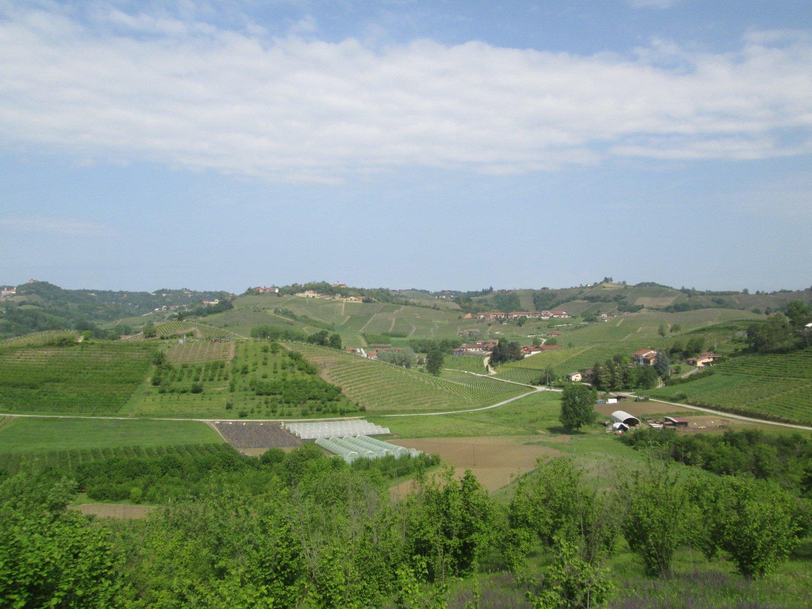 bellissimi panorami sul Roero