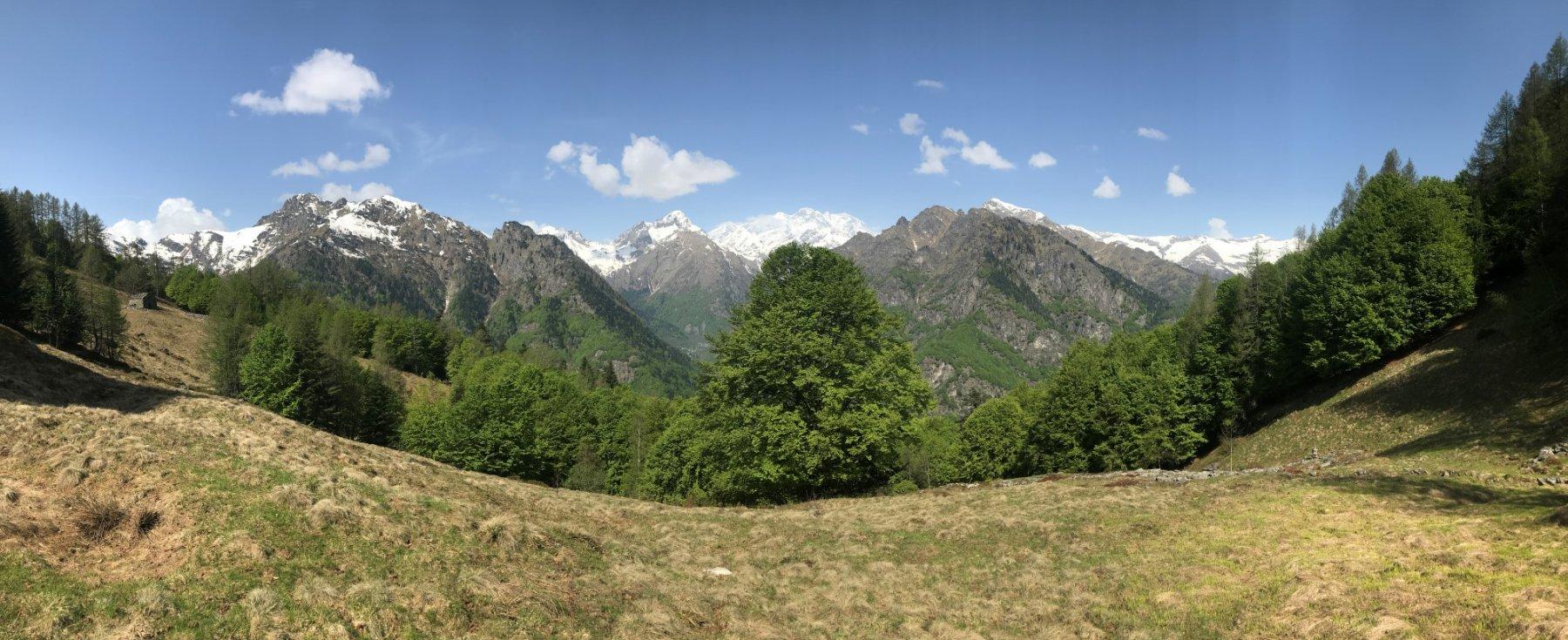 Vista dall'Alpe Campo