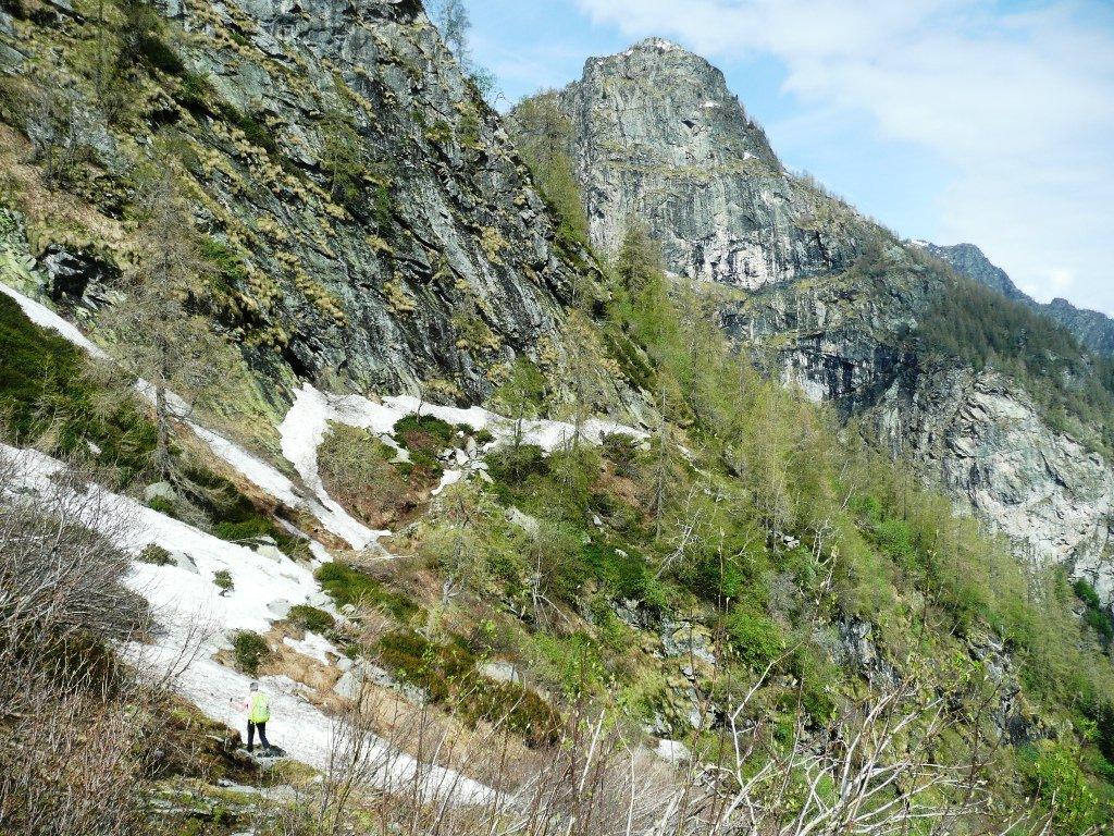 Ambiente. Siamo molto vicini ad alcune imponenti rocce visibili dal fondovalle.