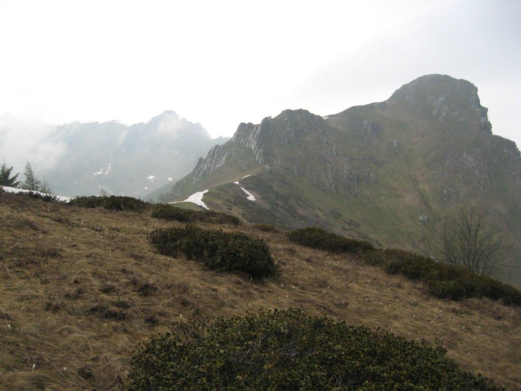 Rocca Radevil e Rocca Pergo piccola