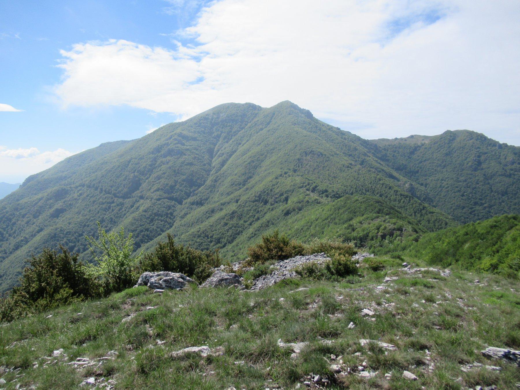 Monte Galero dal Penna.
