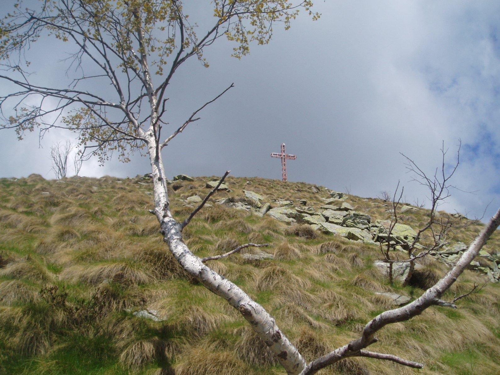 La croce di vetta.  dall'Alpetto.