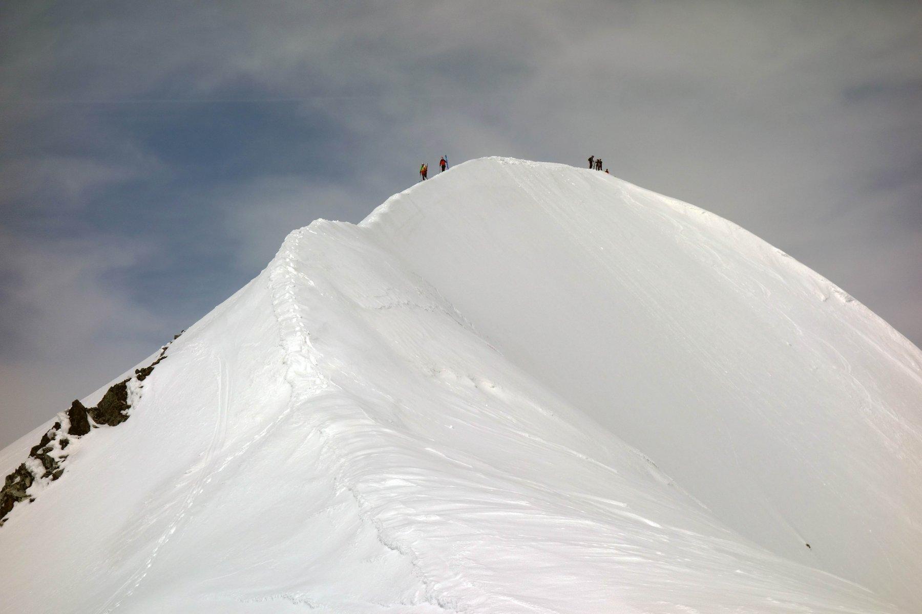 Cresta dell'occidentale