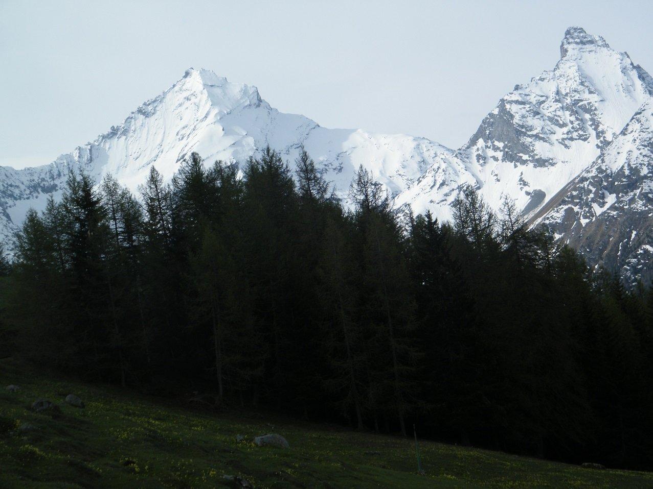 Grivola e Nomenon dall'Alpe Romperein.