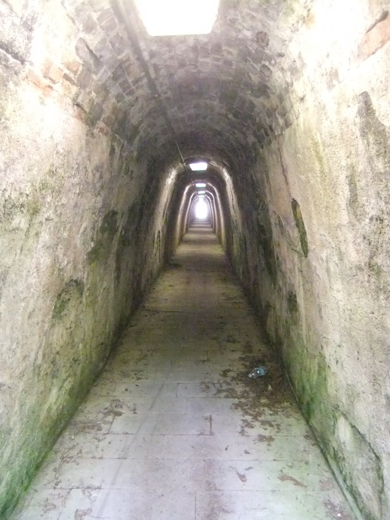 Sentiero dell'Acquedotto Storico di Genova 2018-05-27