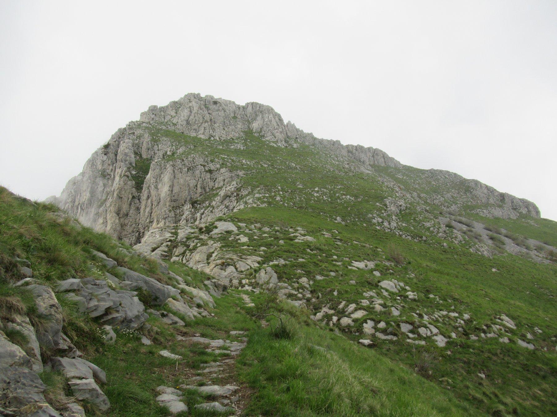 Monte Toraggio visto da sotto il Passo Dragurina.