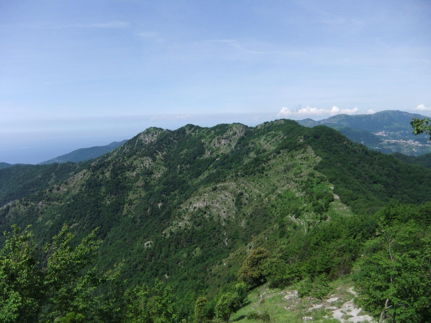 Crinale tra Monte Bello e Monte Borgo
