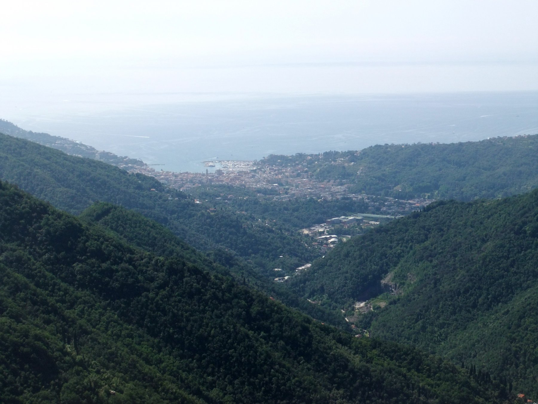 Rapallo dal Monte Borgo
