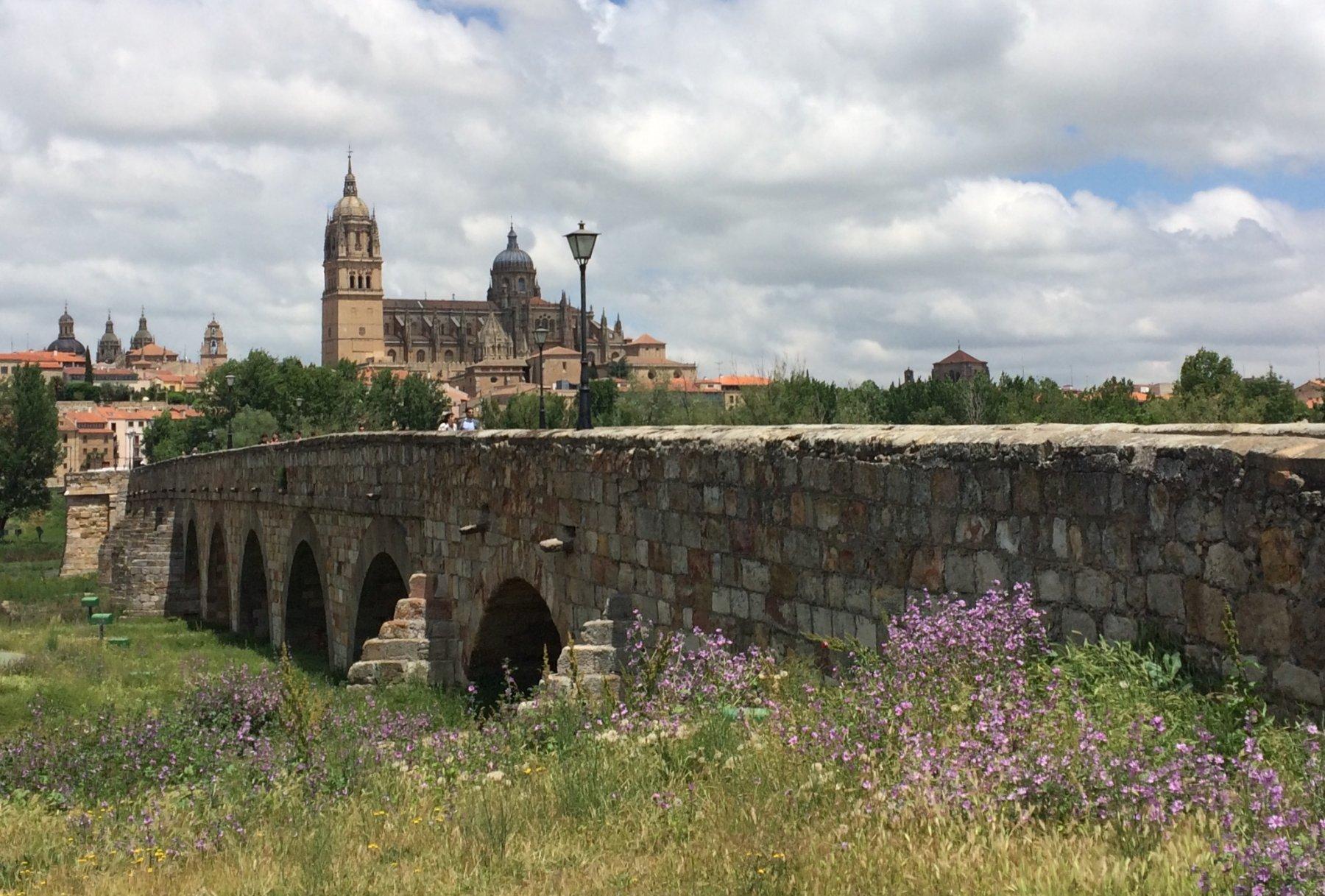 Santiago de Compostela lungo la Via della Plata e Cammino Sanabrese 2018-06-07