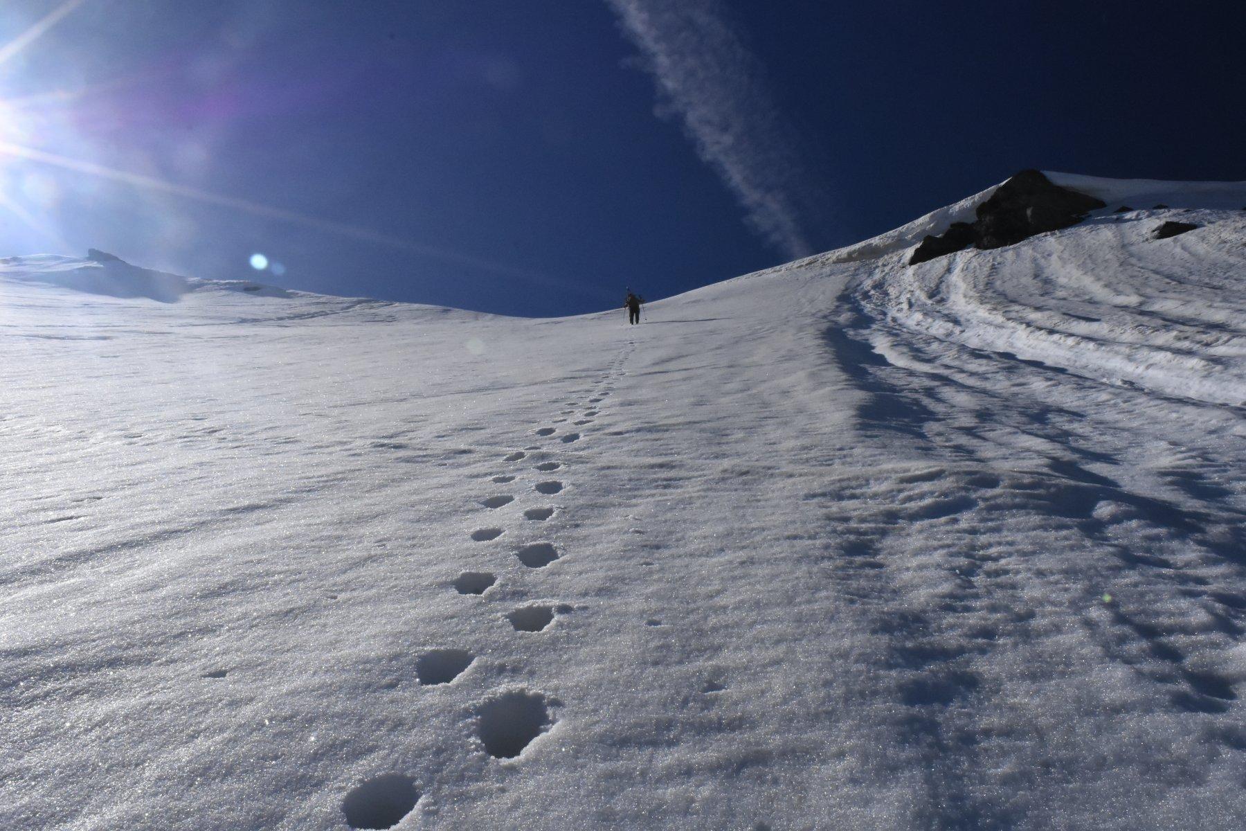 il ripido pendio salito a piedi, che porta al colletto 3000 m circa