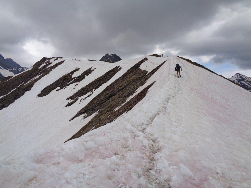 facile nevaio scendendo dalla cima