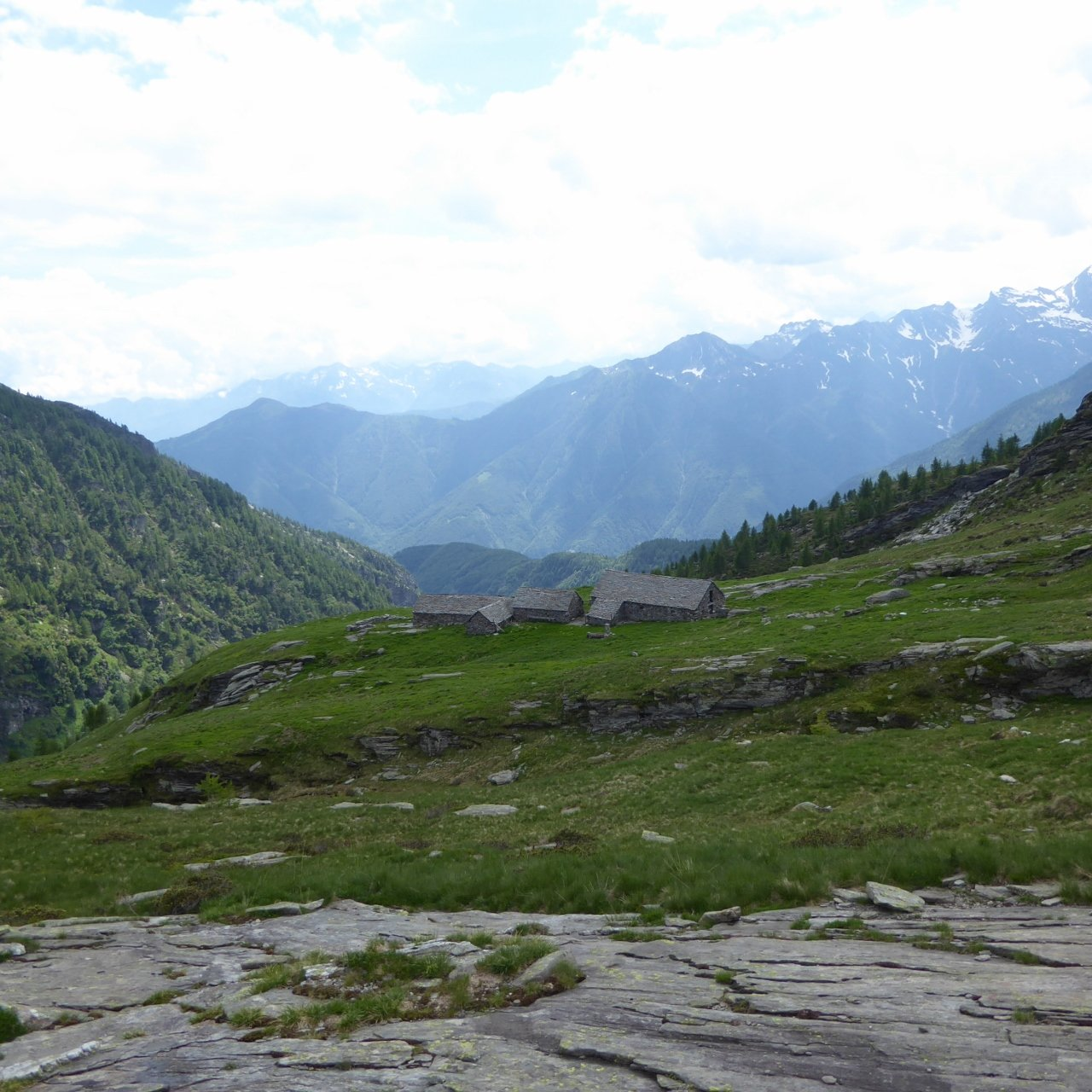 alpe Variola