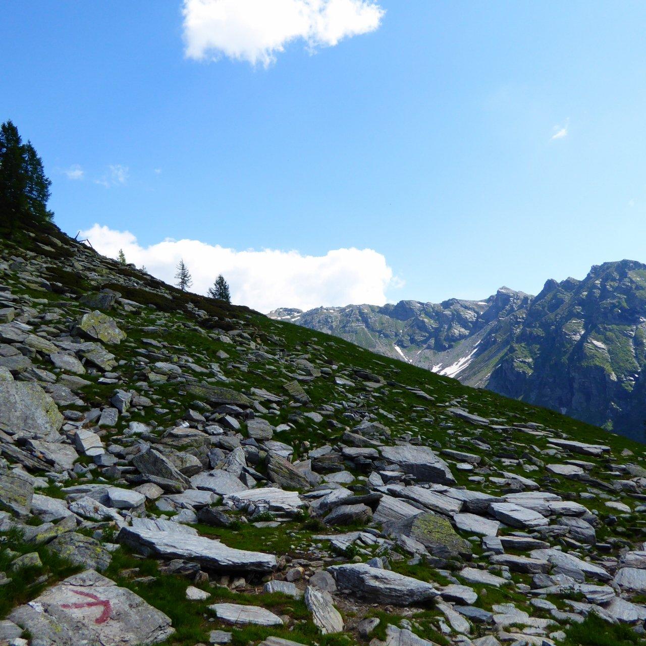 cima e destinazione (centro foto) ripresi dall'alpe Dorca, e quindi ancora lontani