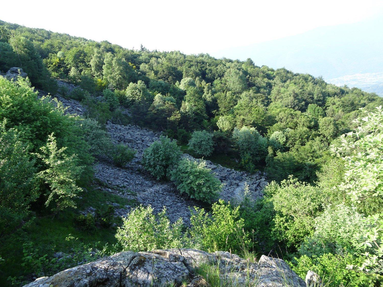 Pietraie all'uscita del bosco nella parte bassa dell'itinerario