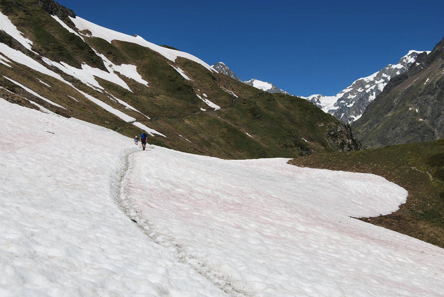 L'ultimo tratto del sentiero balcone, che lascia il solco centrale della VVeny per entrare nel vallone Arp Vieille