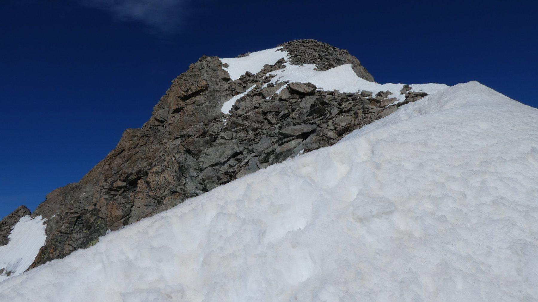 la cresta finale che porta in cima alla Pointe Brevoort