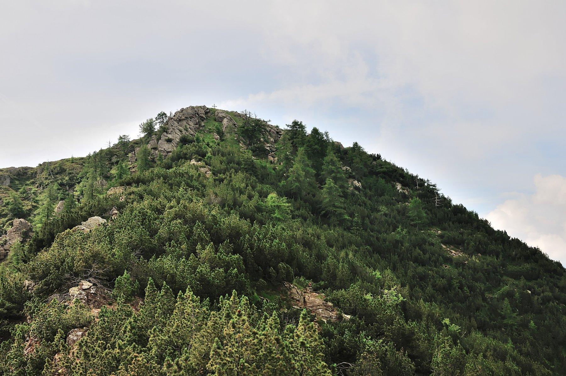 La cima e il canale erboso che porta alla croce di vetta