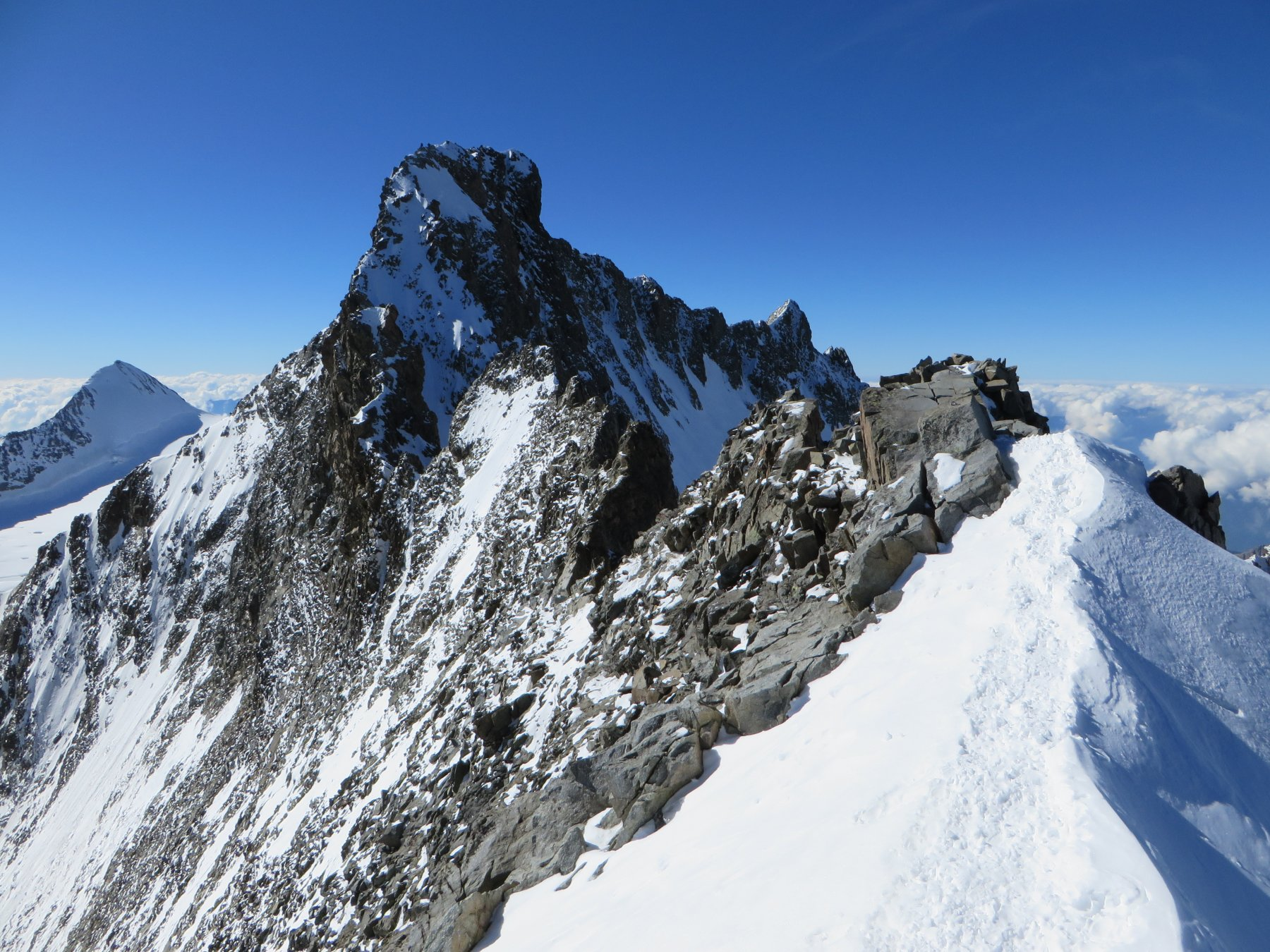Dal Piz Bianco la cresta finale al Bernina