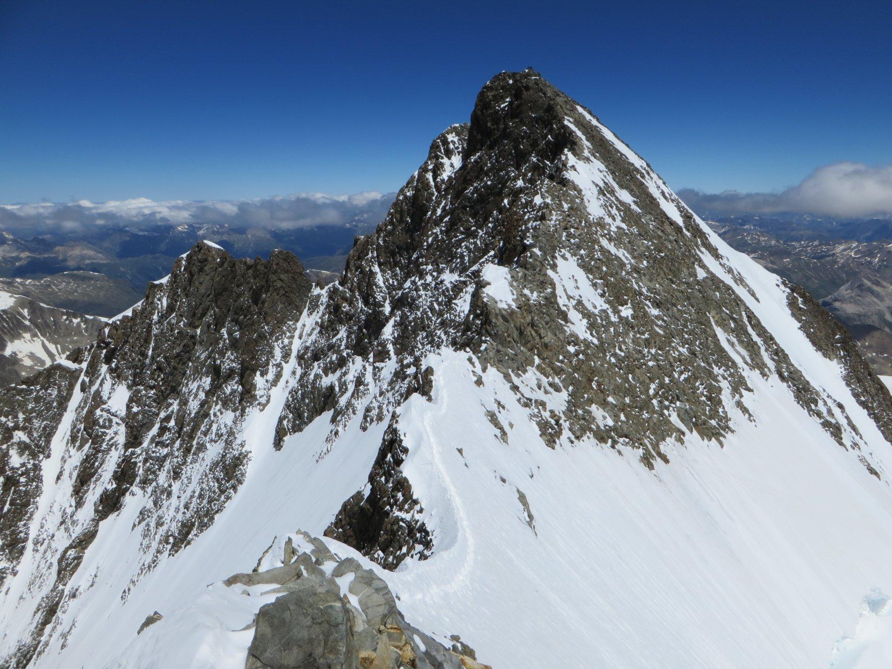 Il Bernina visto dalla Punta Perrucchetti