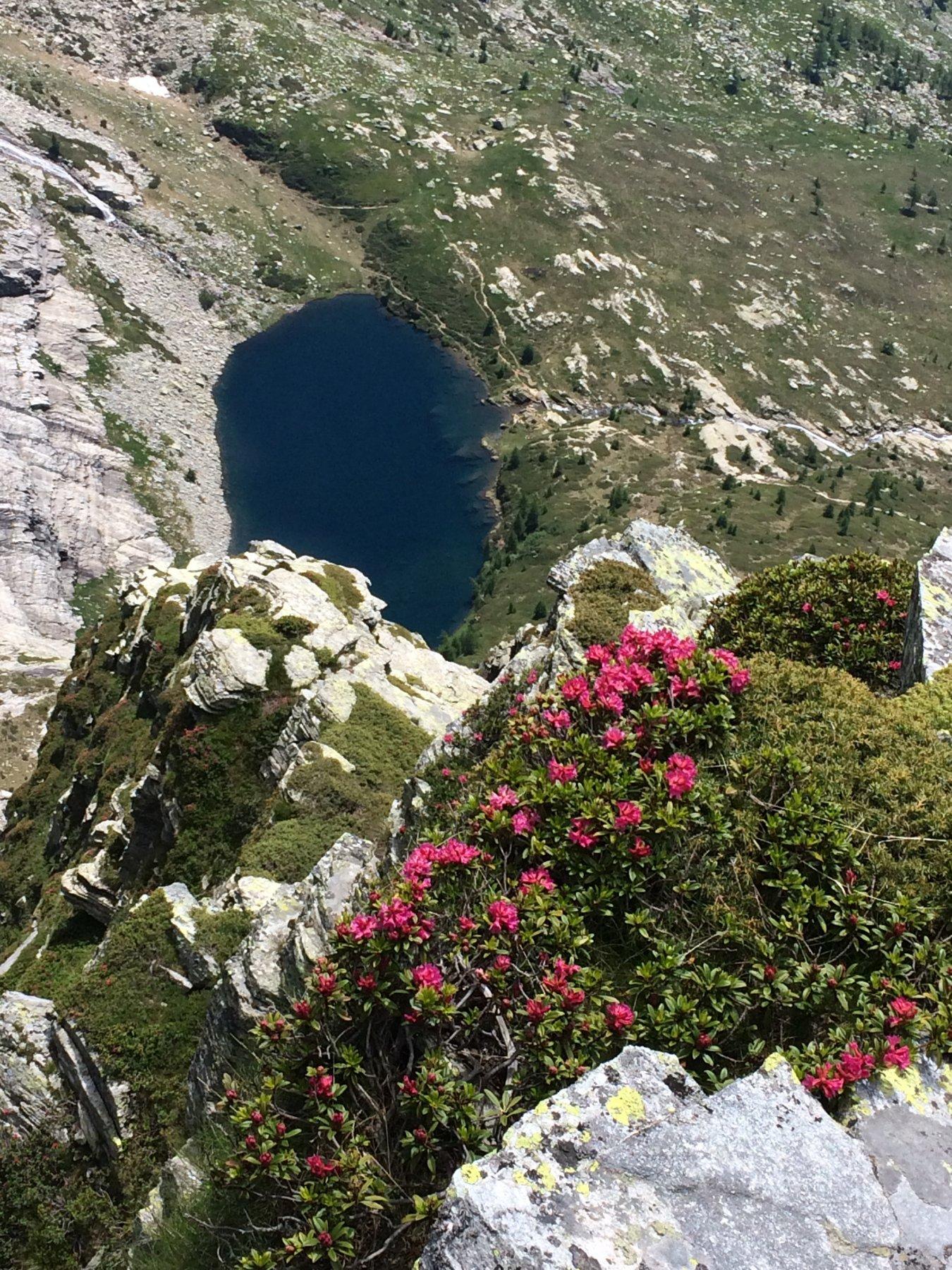 lago di Paione dalla vetta
