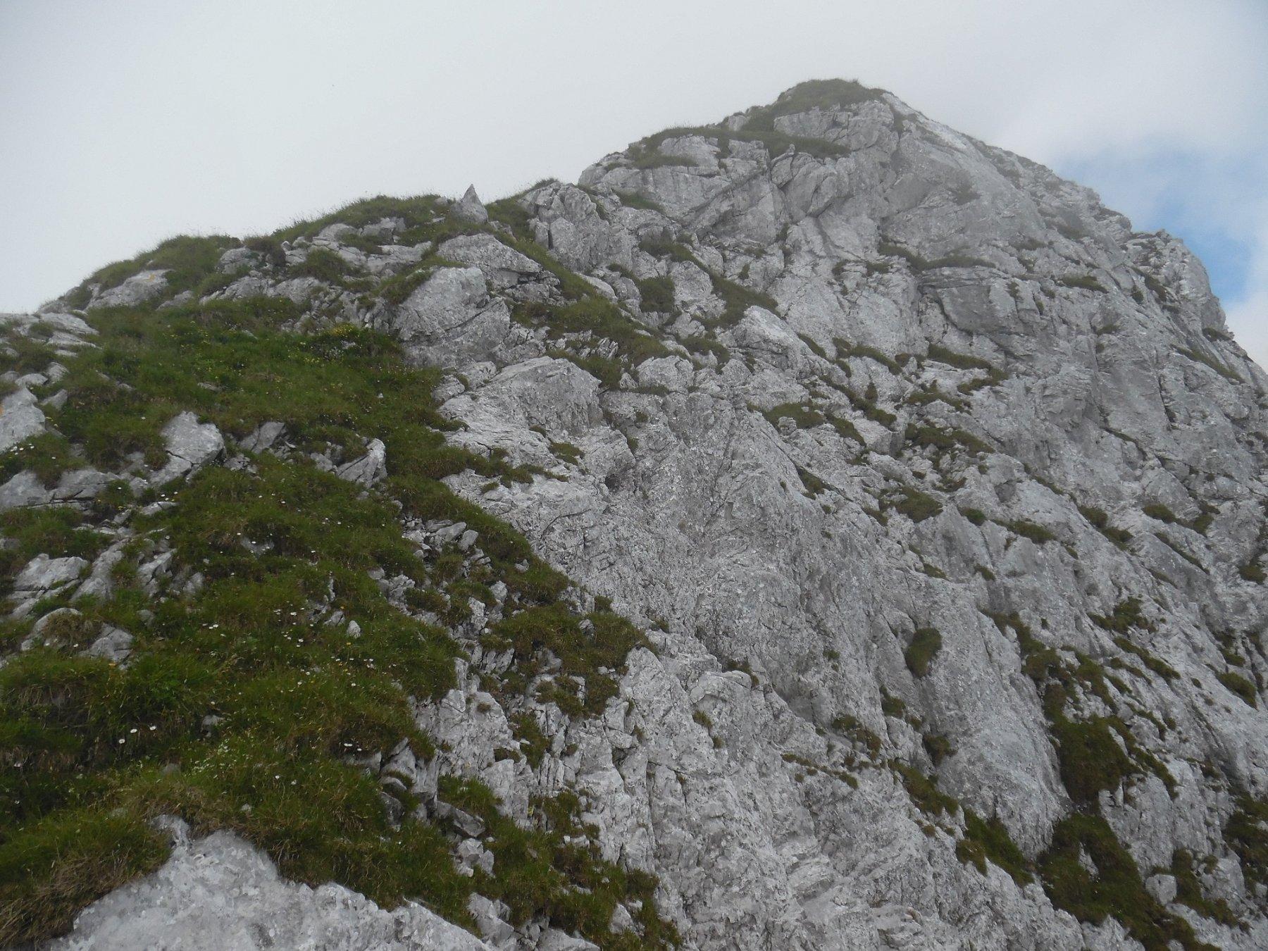 Inizio dorsale nord-est