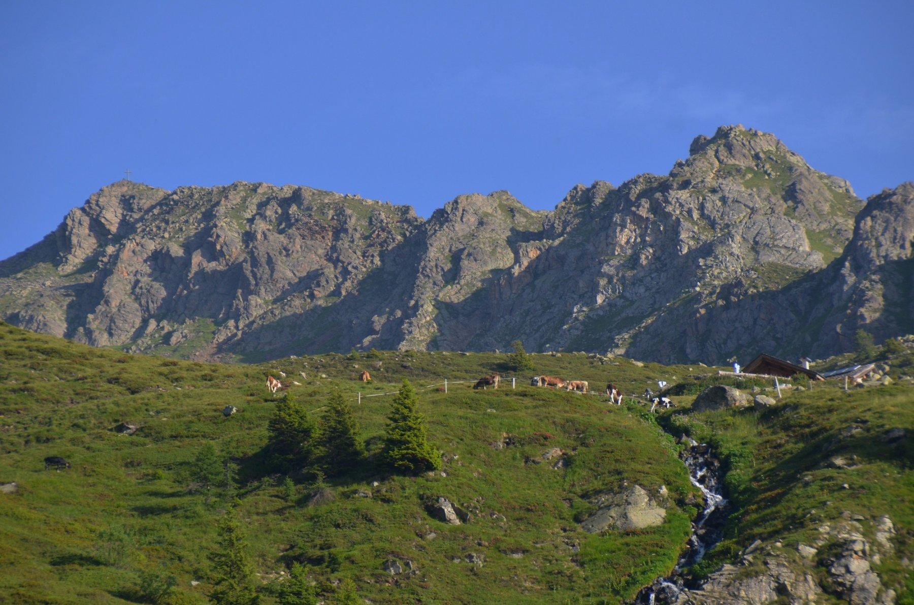 Malga Masa Murada 2046 m e, dietro, la Stùbele e il suo crinale sud-est