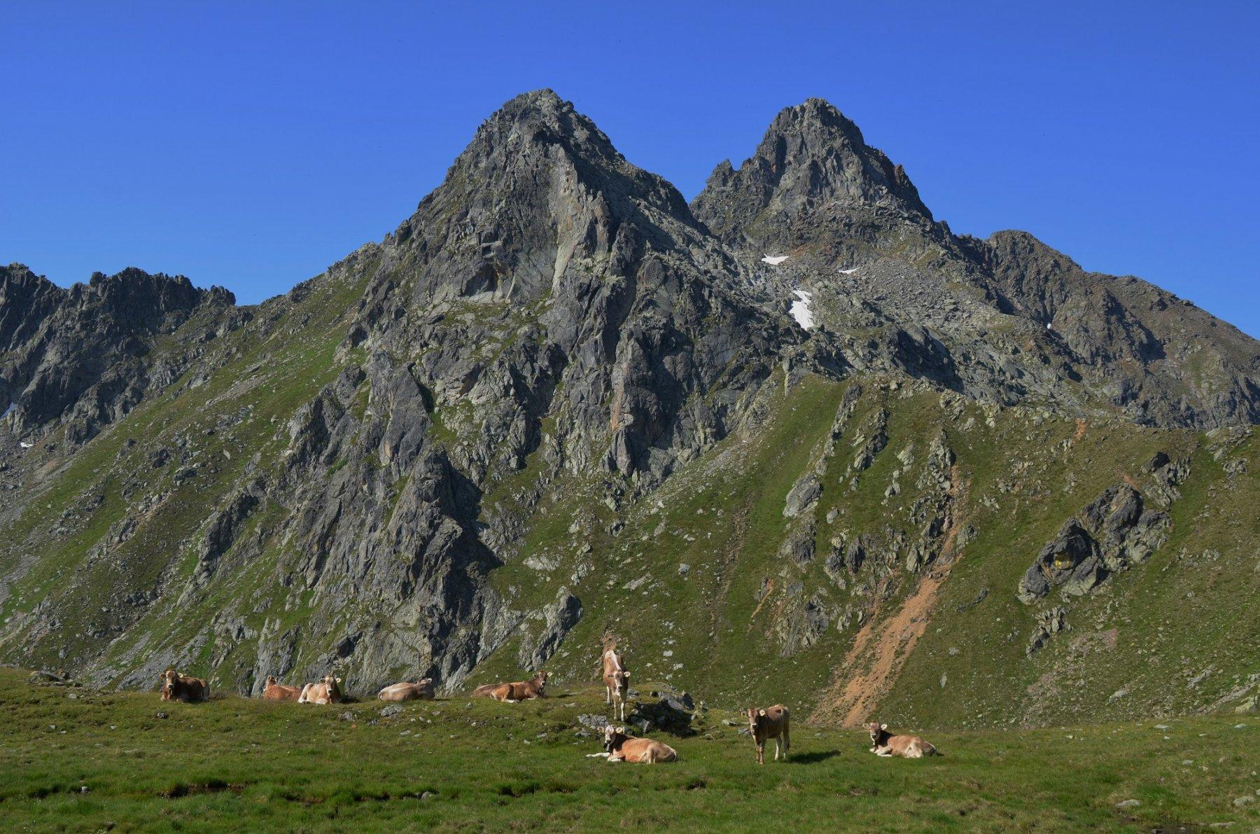 Cima Binasia e Schrumm-Spitze