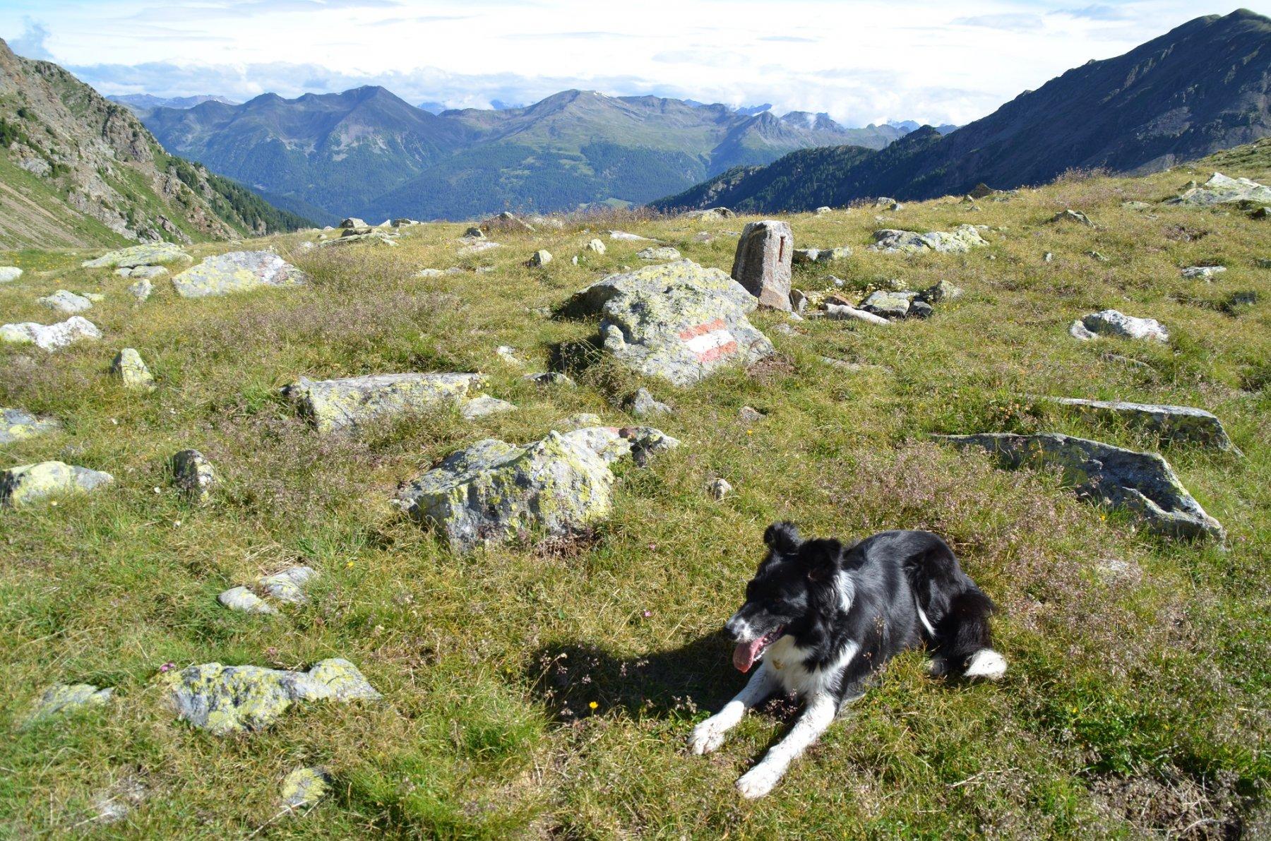 Passo del Termen 2252 m. Dietro la val d'Ultimo