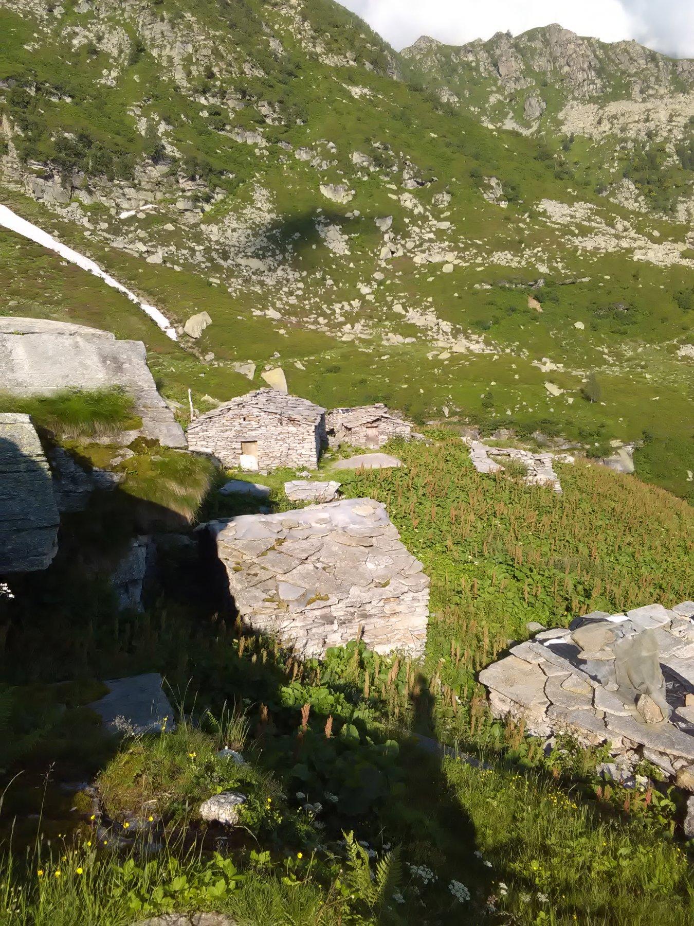 Alpe del Vallone da sopra
