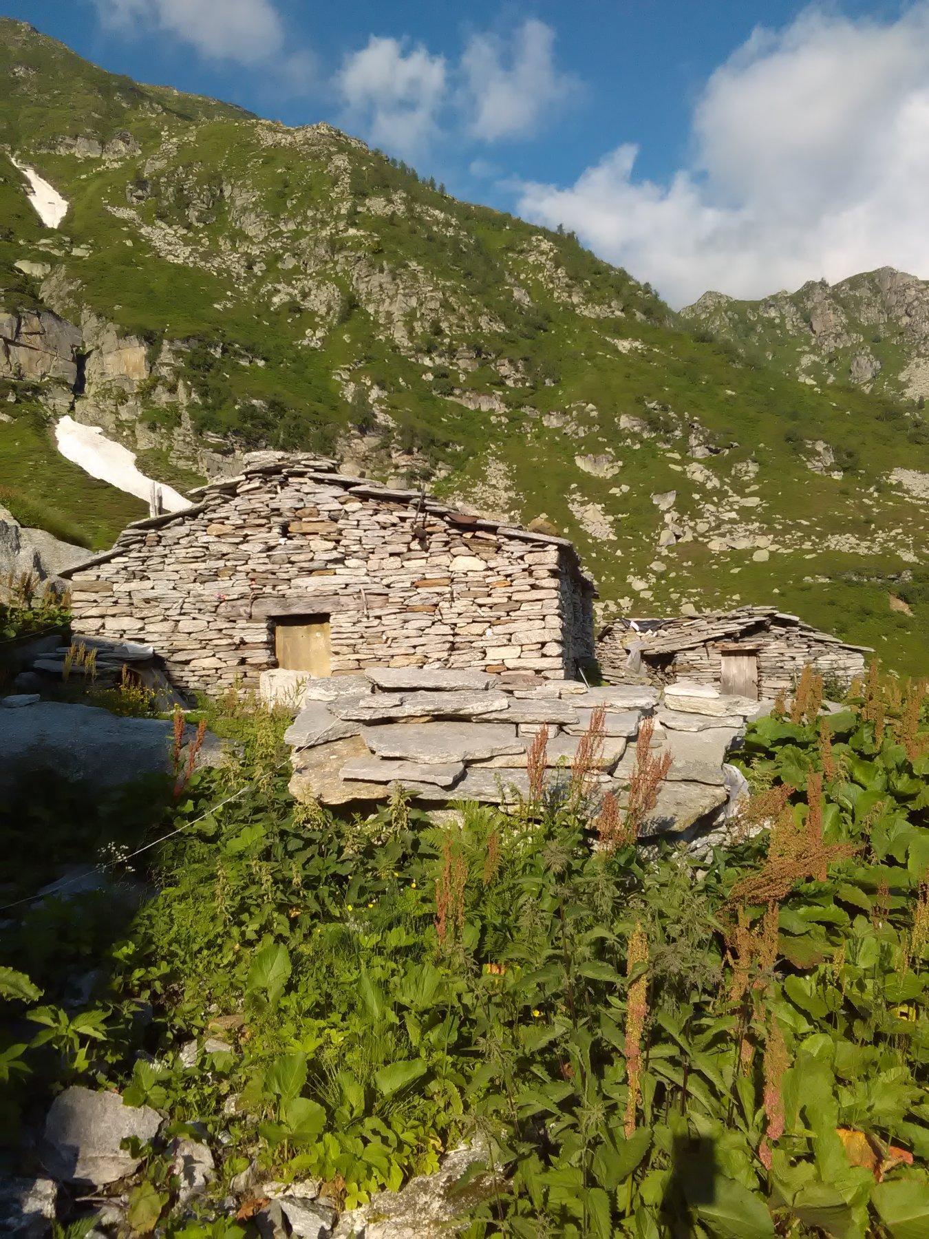 Alpe del Vallone