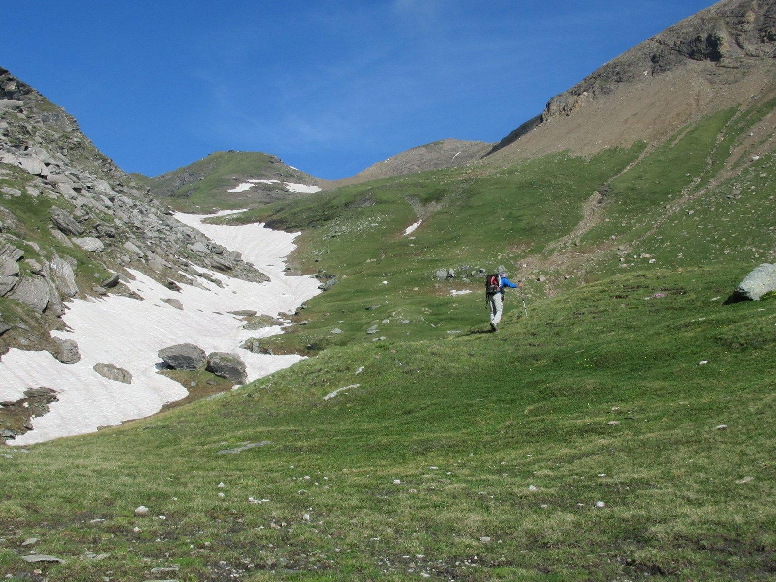 I pendii erbosi oltre q. 2400 dopo aver lasciato il sentiero, in fondo a sinistra la Beccher