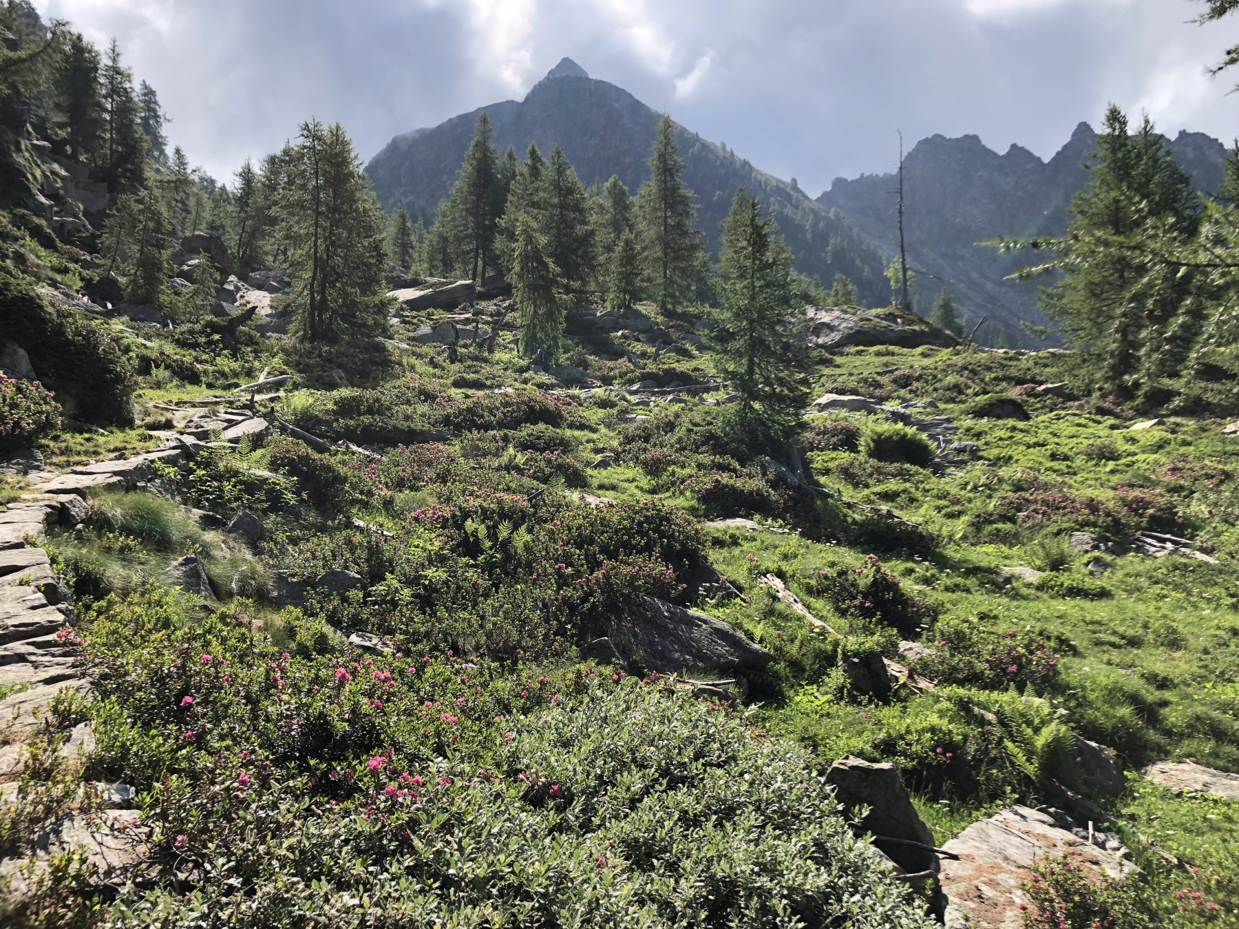 Paesaggio nella parte iniziale della gita