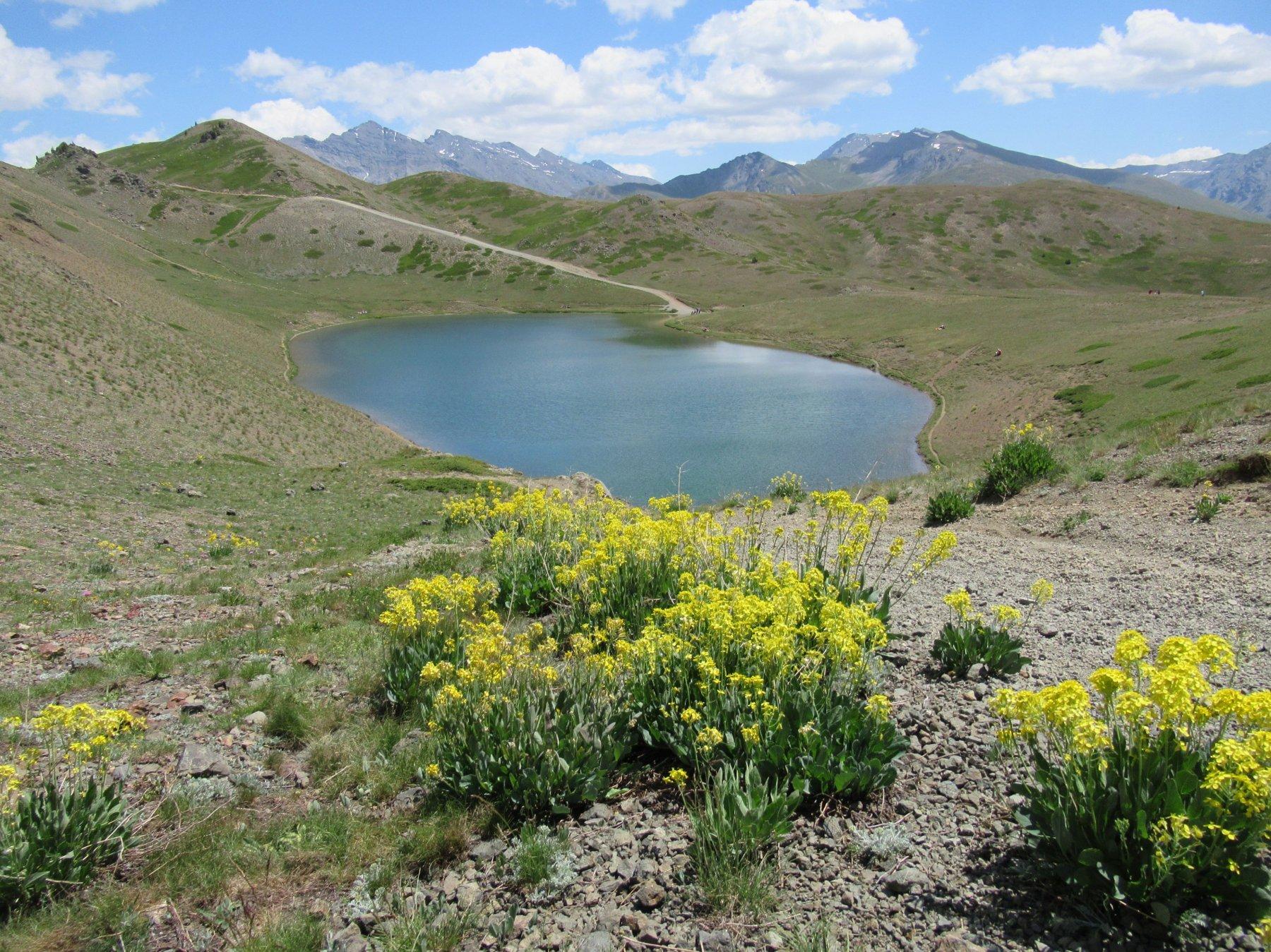 Gimont (Mont) o Grand Charvia da Colle Bercia 2018-07-13