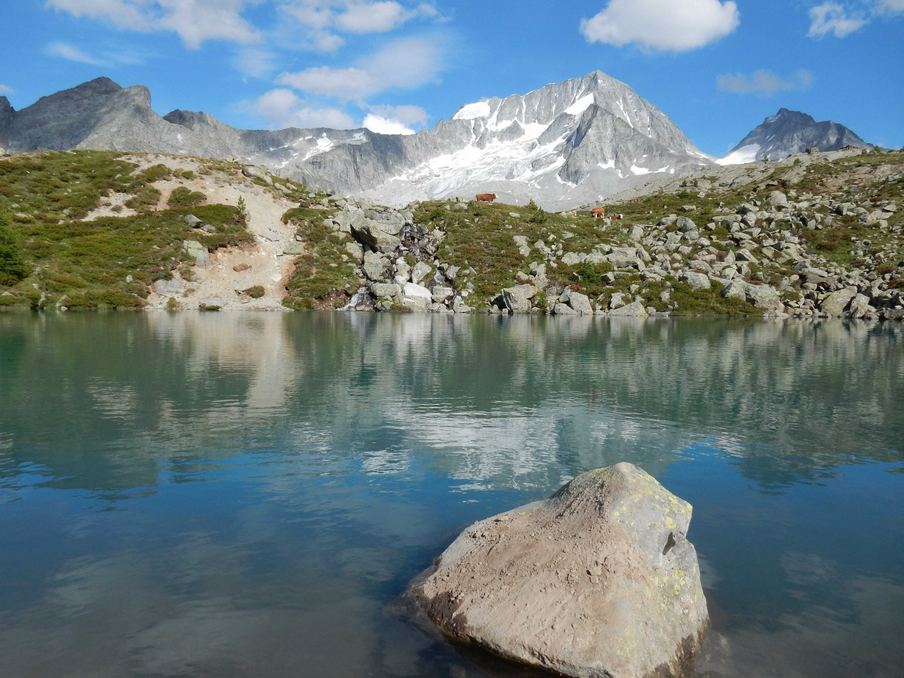 Piccolo laghetto sopra il rifugio con bellissima vista su l'Hochgall (Collalto).