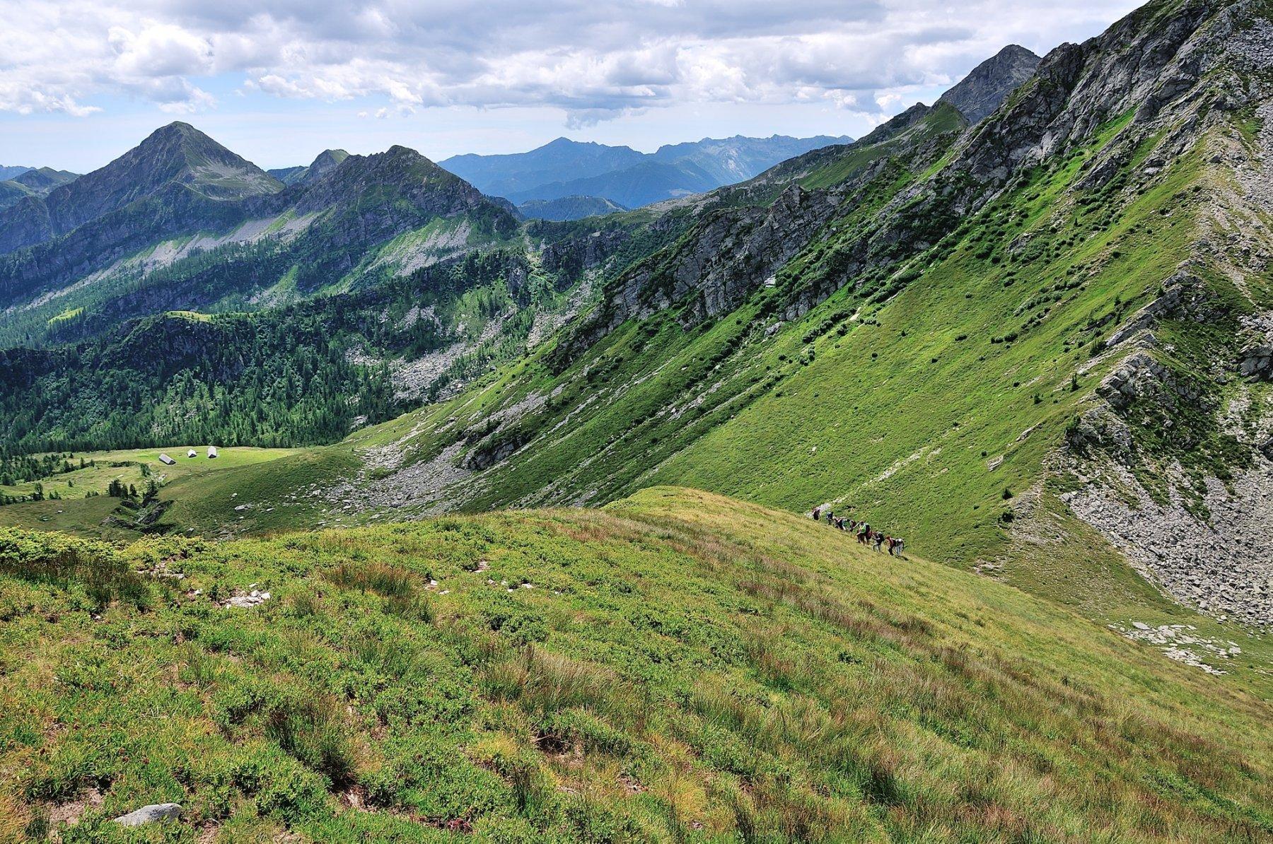 Primo tratto di cresta sopra il Passo Campolatte