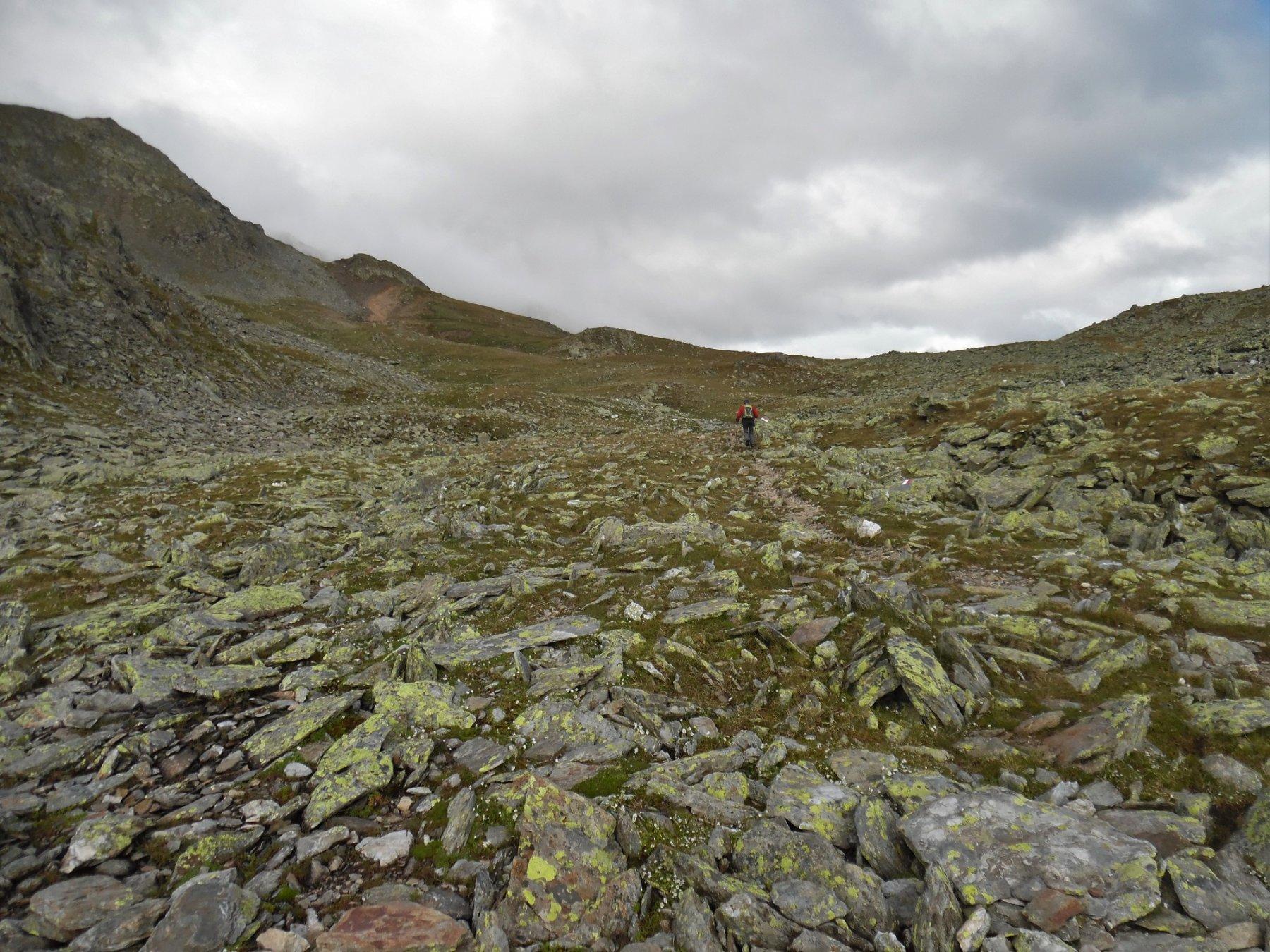 Prati e rocce lungo il sentiero 11A
