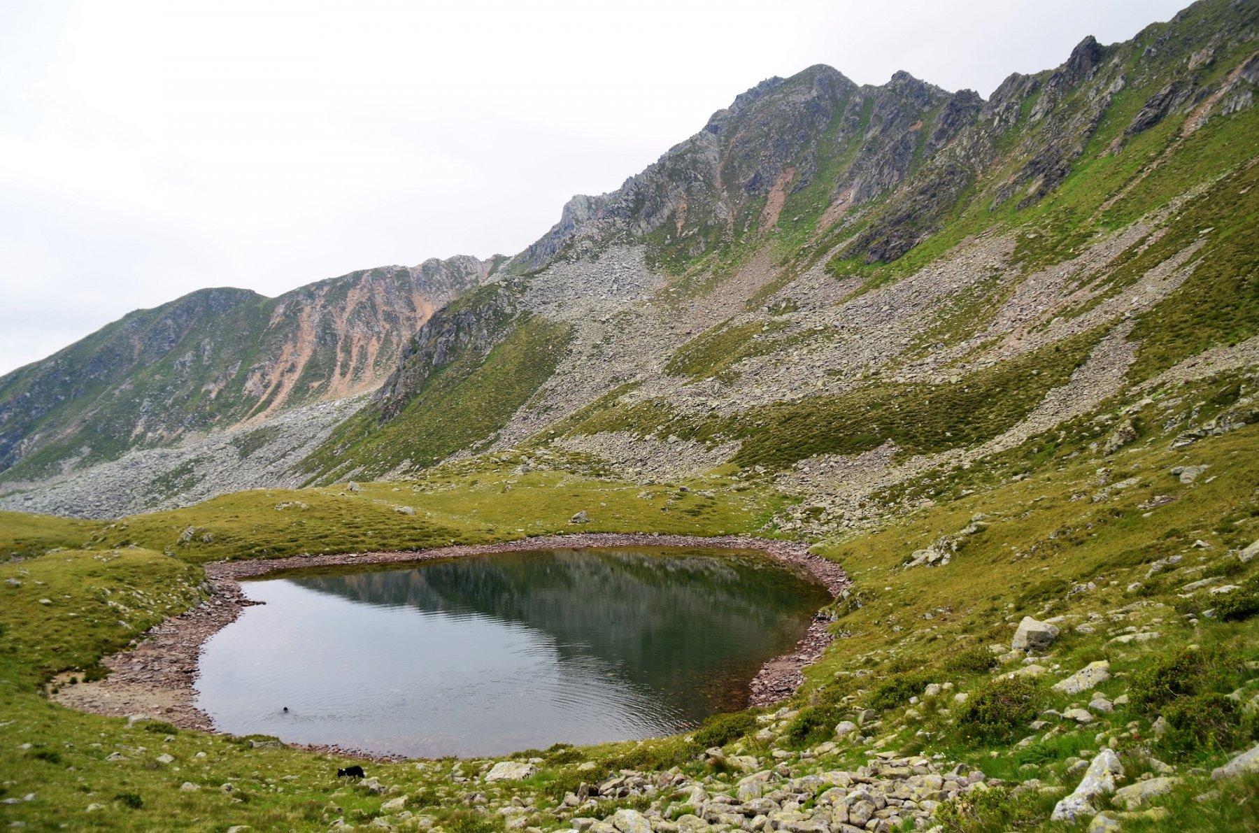 Lago Cemiglio. Dietro la cresta est della Seefeldspitze