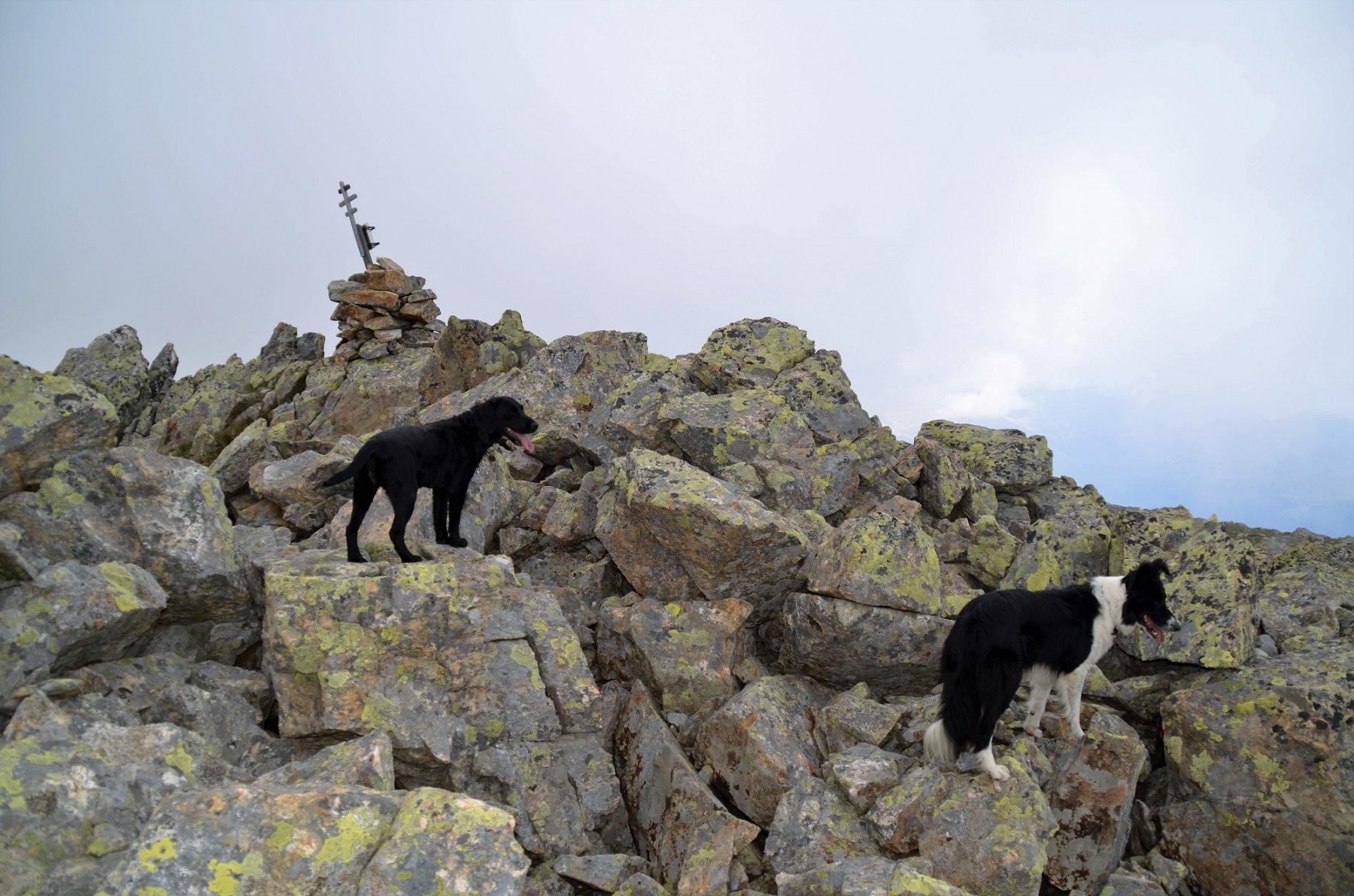 Seefeldspitze 2543 m